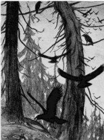 ravens-trees-burhoe