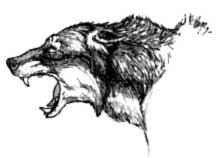 wolfblood-brian-alan-burhoe