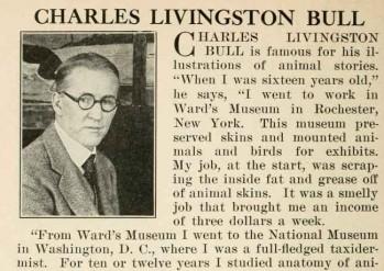 charles livingston-bull-illustrator-bio
