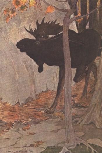 charles-livingston-bull-moose