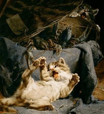 Kittens-Basket-Crawfish-Julius-Adam-II