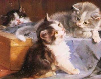 three-kittens-cats-quotes