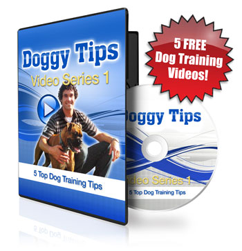 BEST FREE DOG TRAINING VIDEOS!