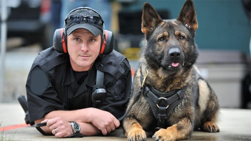 RCMP-Police-Dog